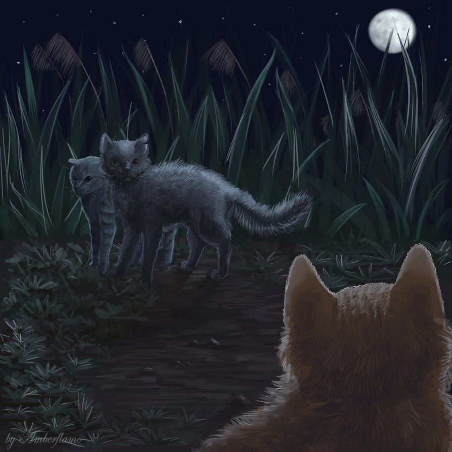 Graystripe S Return By By Amberflame Warrior Cats Art
