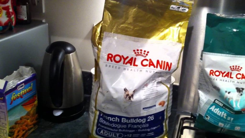 Best Dog Food Brand For French Bulldog Puppies Dog New Babies