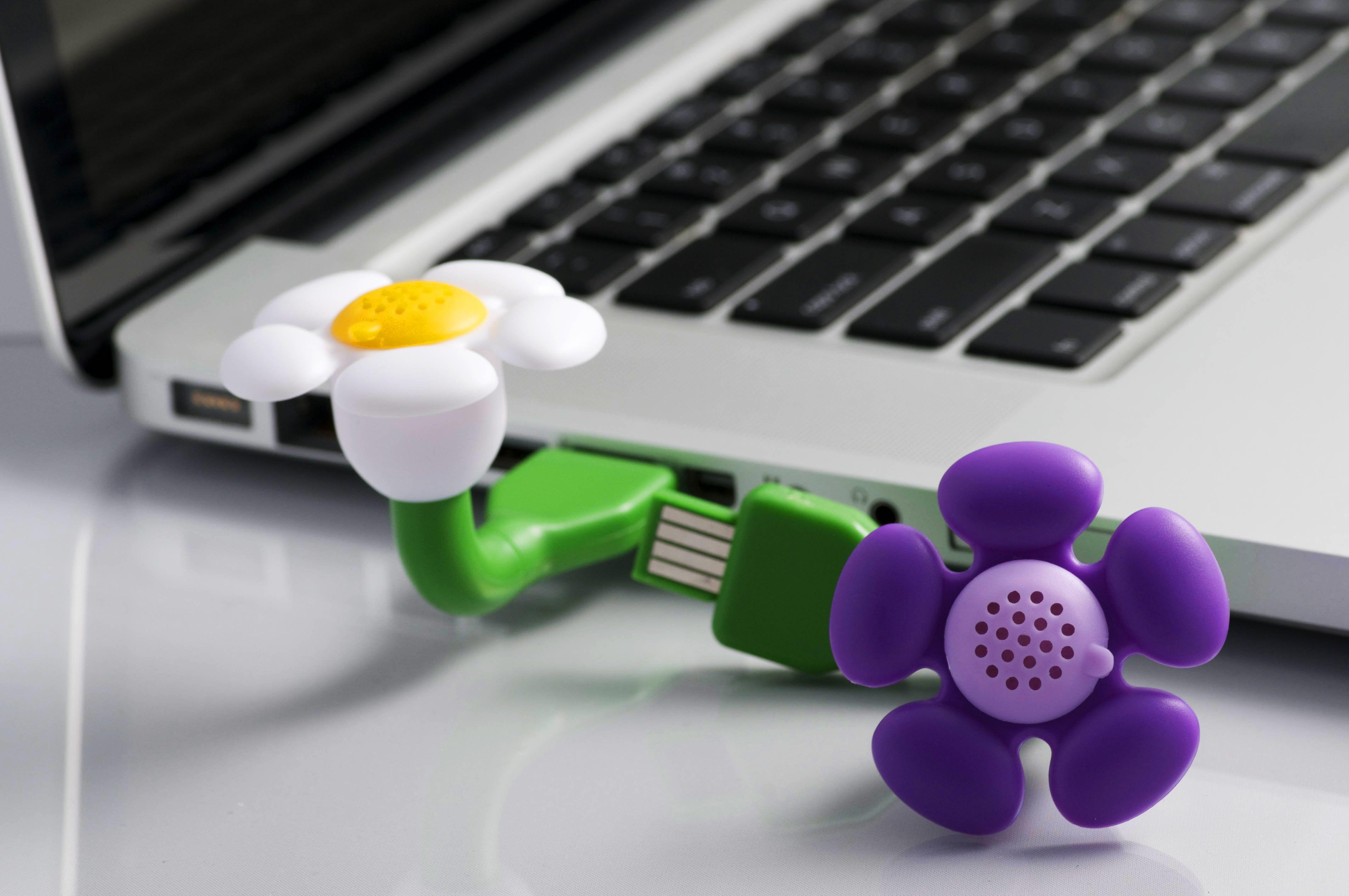 Home Usb, Aroma diffuser, Flower perfume