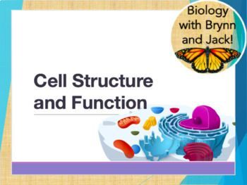Cell Structure and Function PPT | Biology! | Structure, function