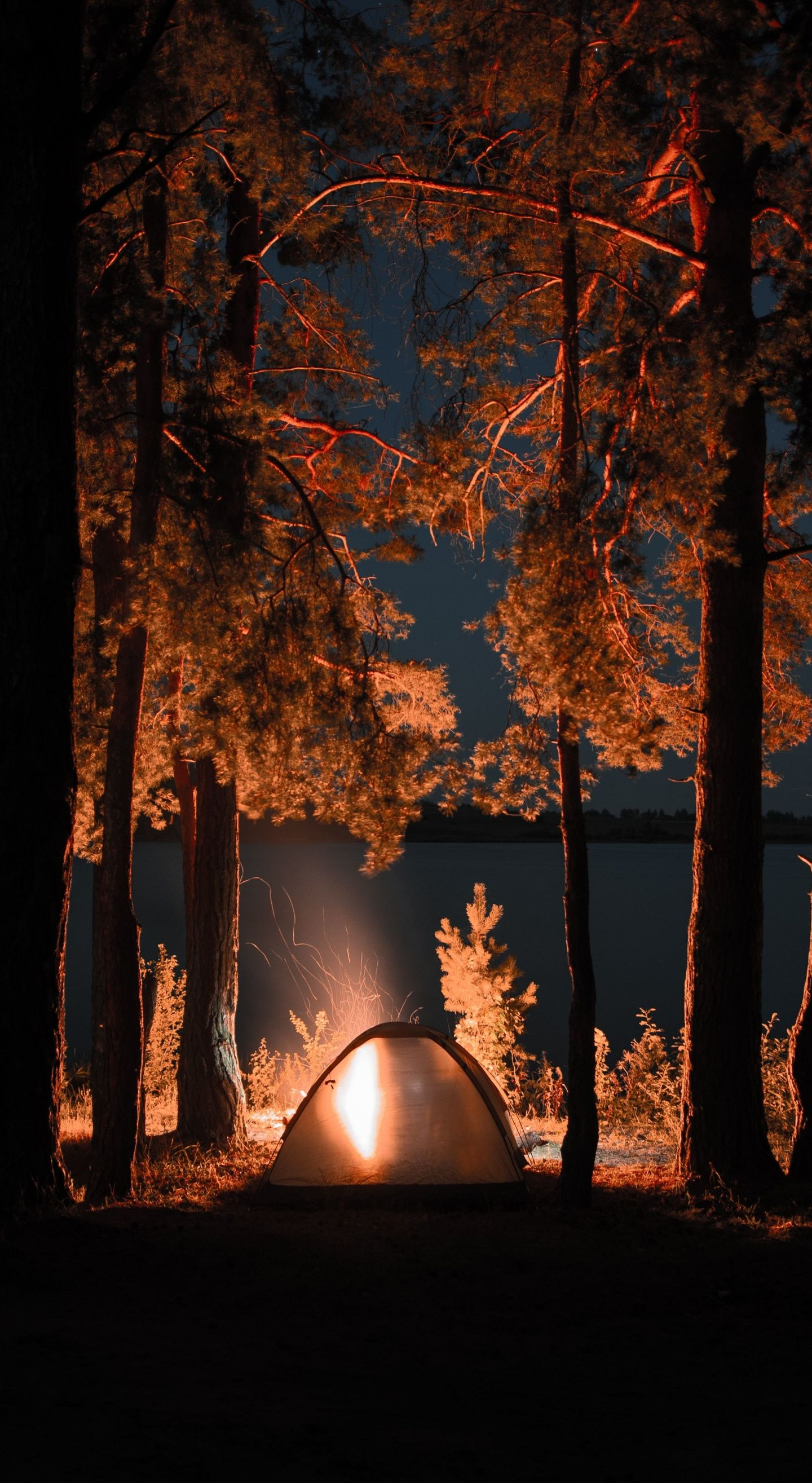 1440x2630 Outing Campfire Trees Tent Night Wallpaper Nature Wallpaper Wallpaper Nature