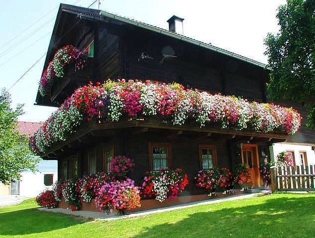 House covered in flowers floral gardens balconies for Case bellissime esterni