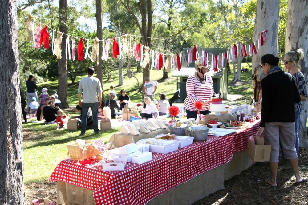 Picnic Red White Gingham Birthday Party Ideas Photo 1 Of 43 Picnic Birthday Party Picnic Party Park Birthday