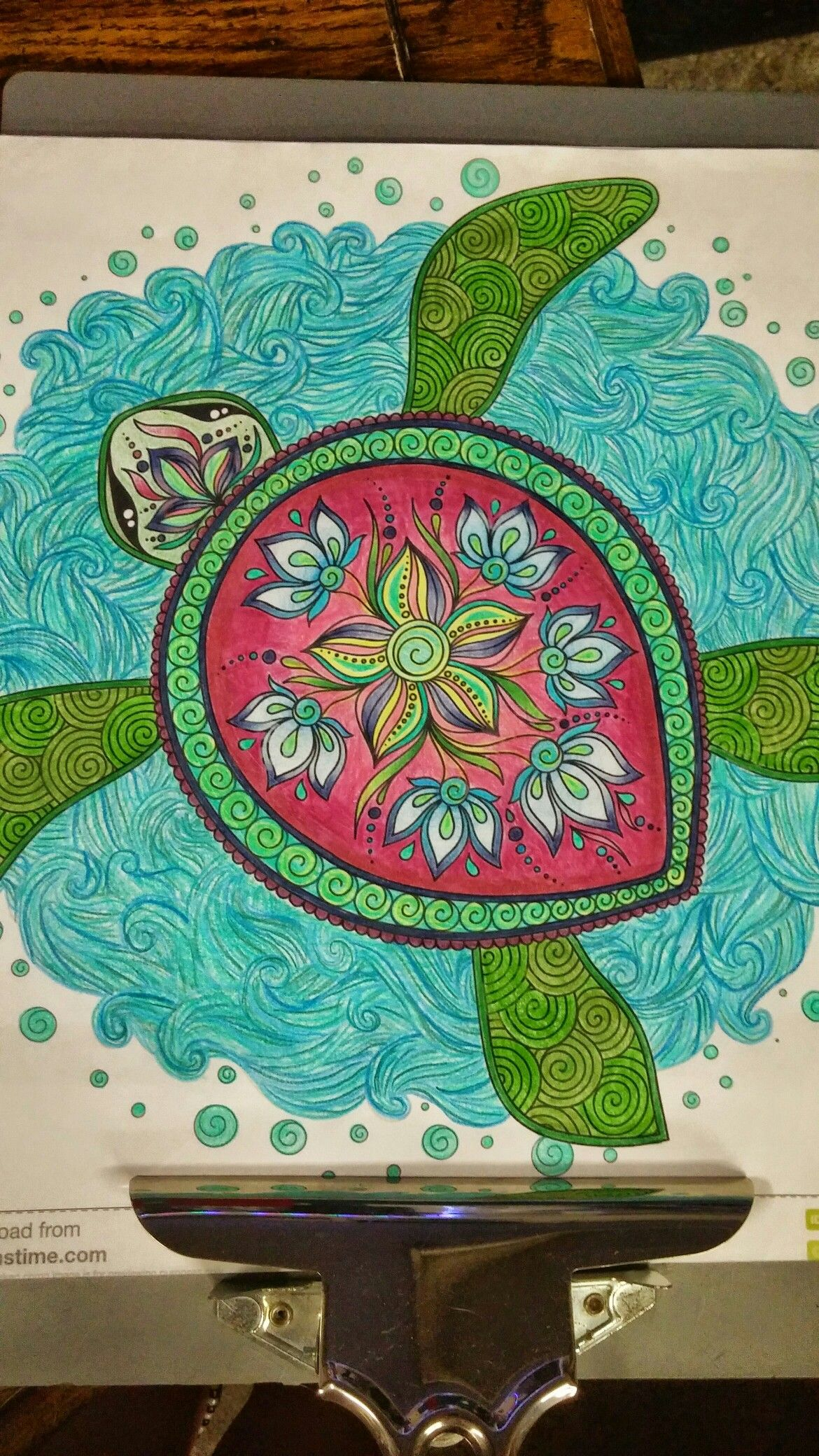 Adult Coloring Colorful Colored Pencils Prisma Completed Finished Turtle