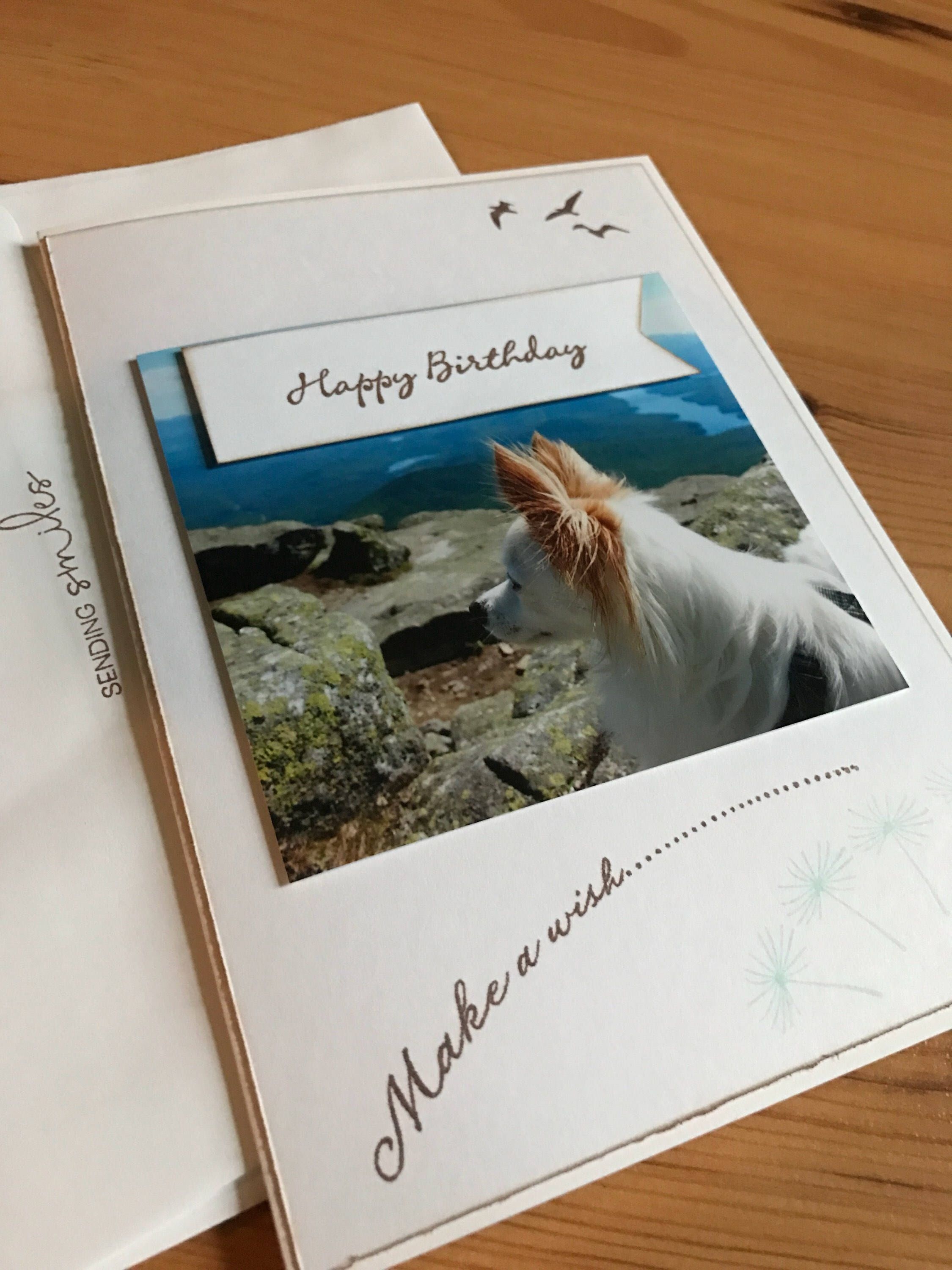 Happy Birthday Greeting Card Featuring Marshmellow On Whiteface