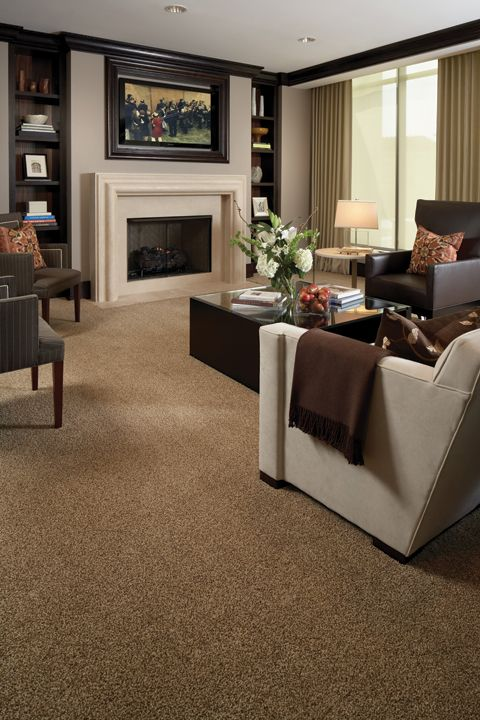 Beber Plush Patterned Tile Brown Carpet Living Room Living