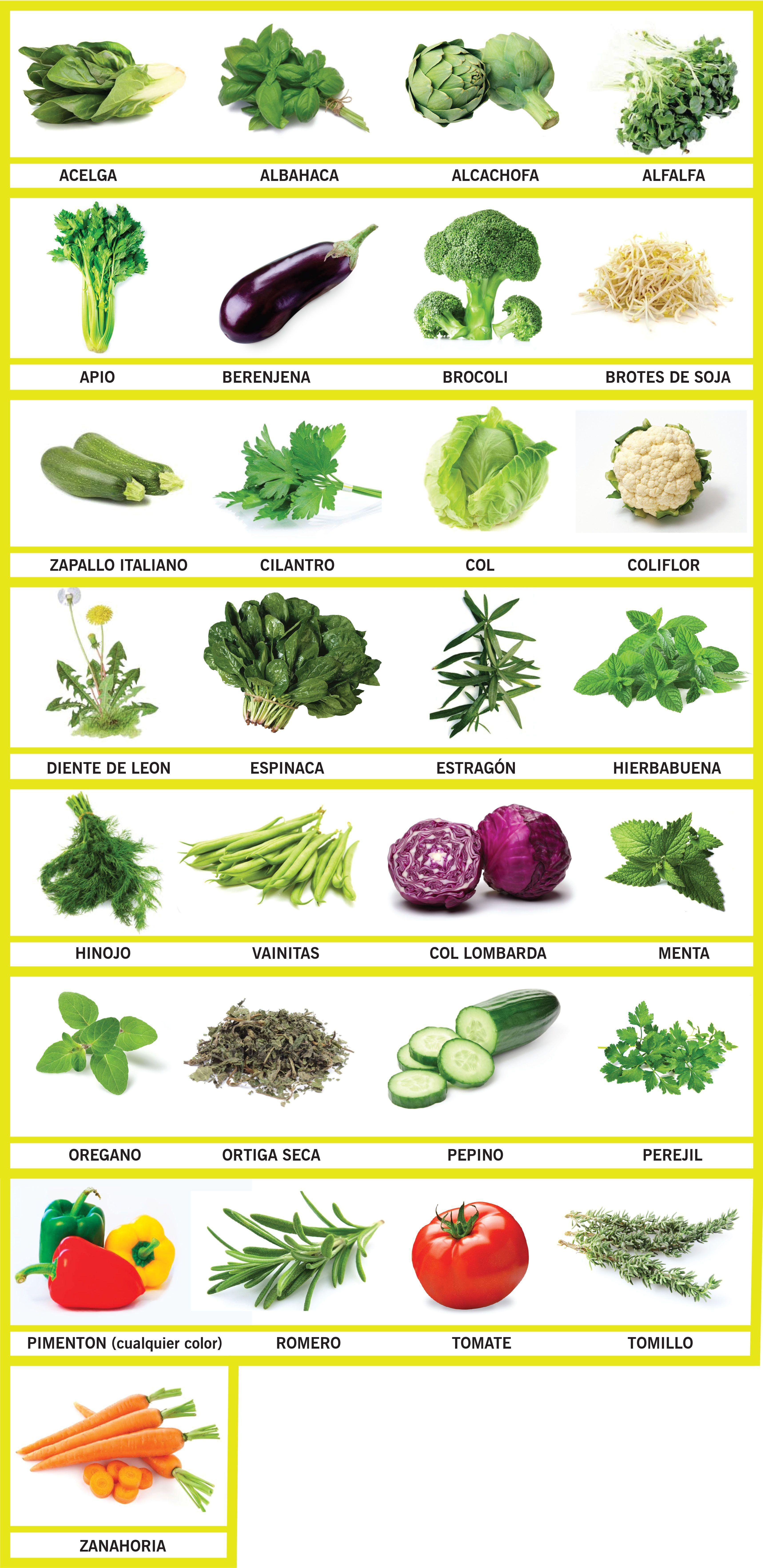 Verduras Interdiarias