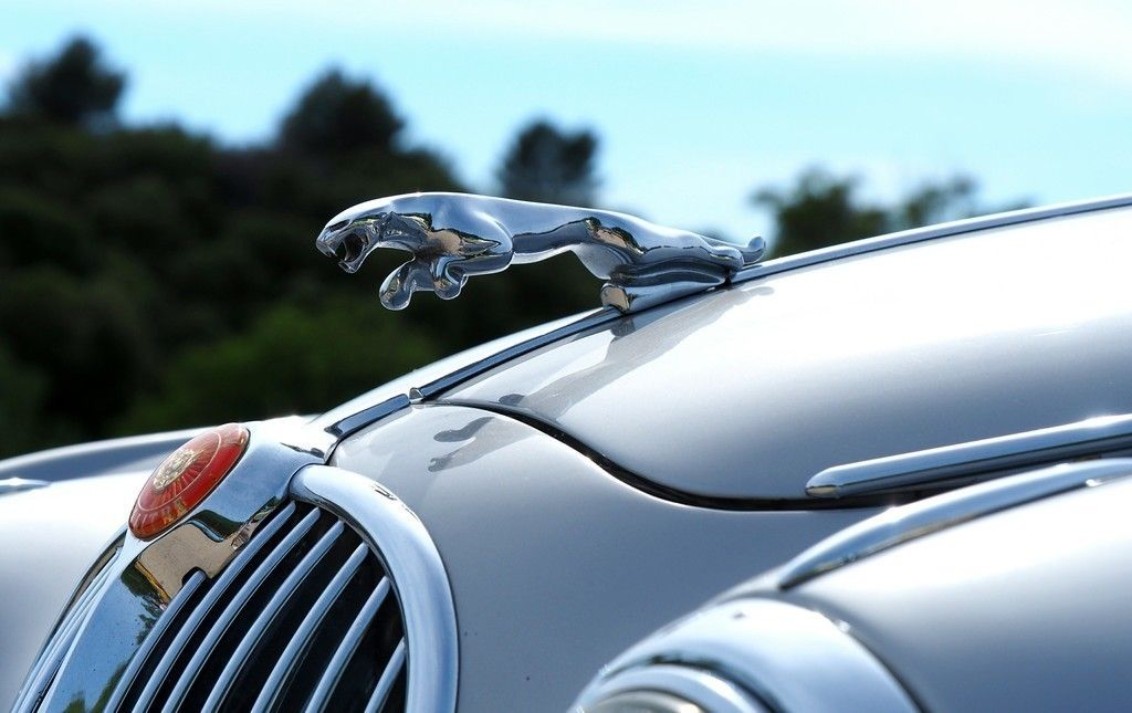 Jaguar Car, Logo, Car Wallpaper