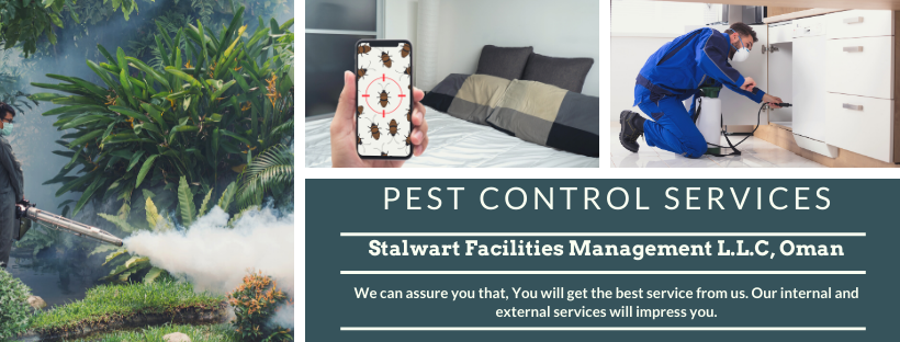 The Stalwart Pest Management Team , All our work is