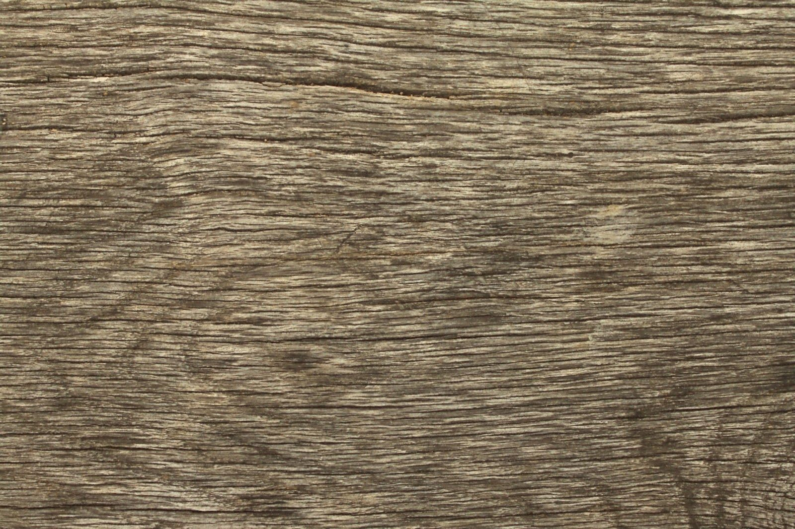 Wood Dry Cracked Bench Tree Bark Texture Ver 3 In 2019