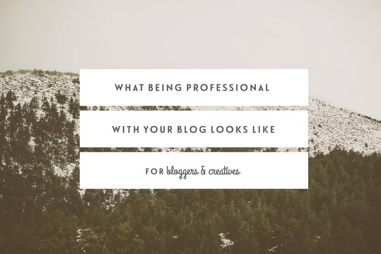 What Being Professional With Your Blog Looks Like Blogging, Blog