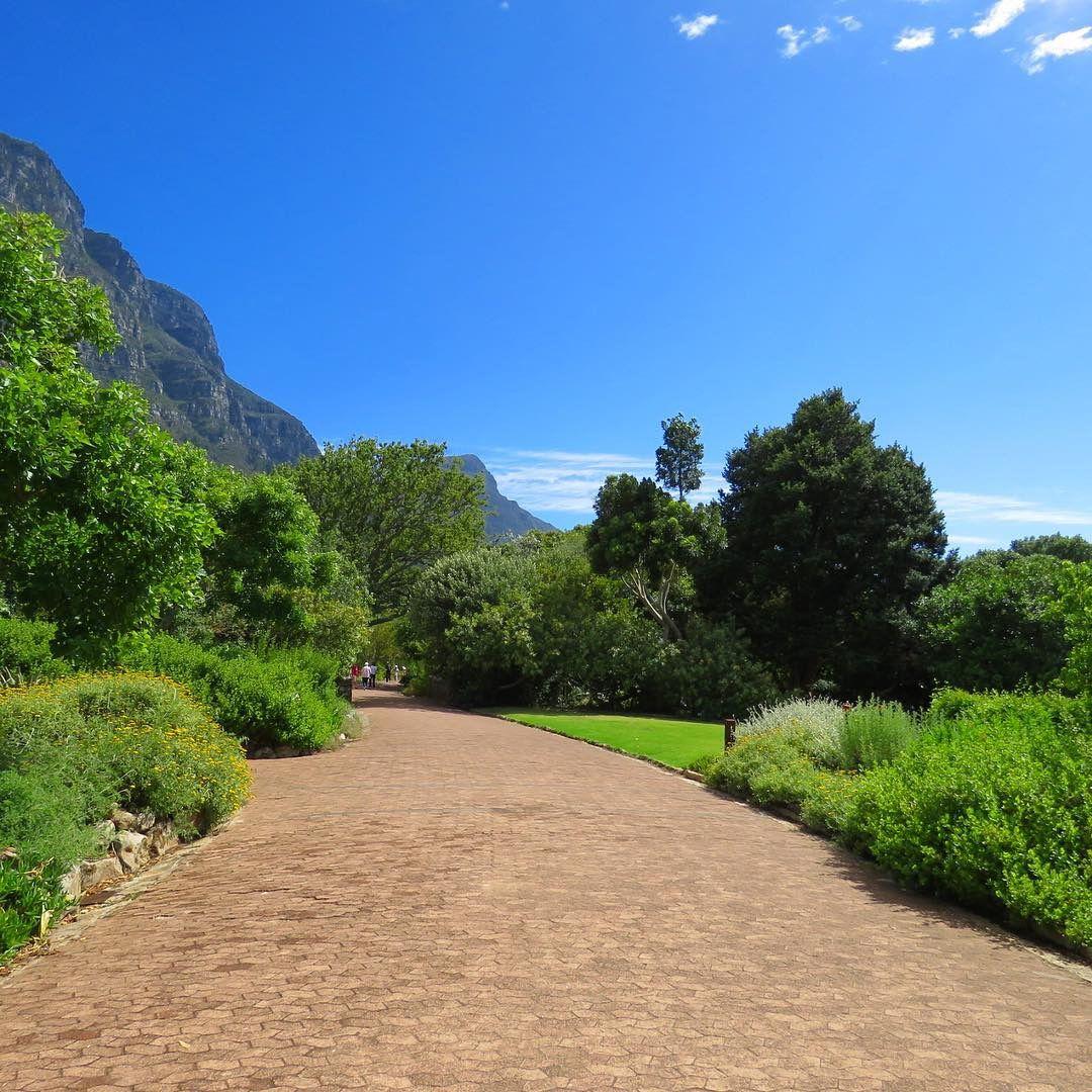 Kirstenbosch Botanical Garden, Cape Town. Wonders of the