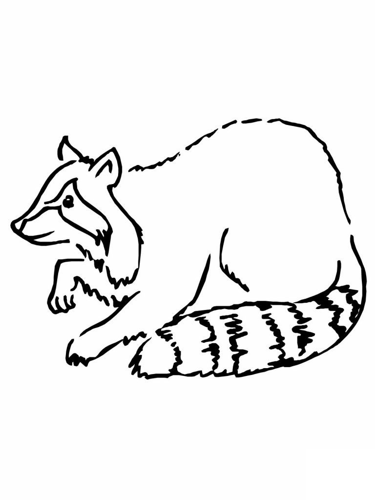 Free Printable Raccoon Coloring Pages For Kids Animal Coloring Pages Coloring Pages Coloring Pages For Kids