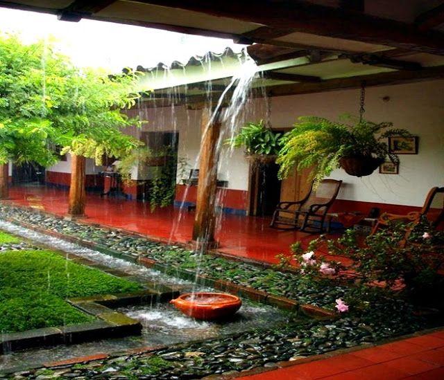 Roça lirios do campo.: Acordando na roça ouvindo a chuva que: Caem no tel...