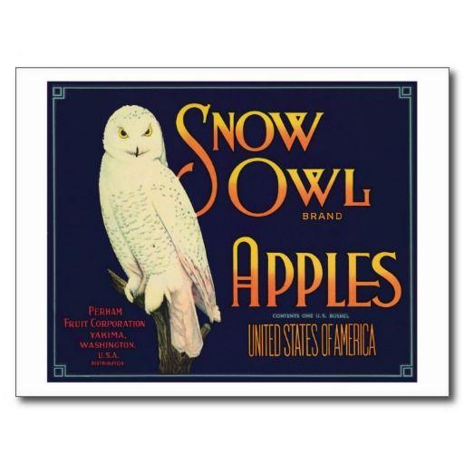 Vintage Apples Food Product Label Post Cards #Postcards #Vintage