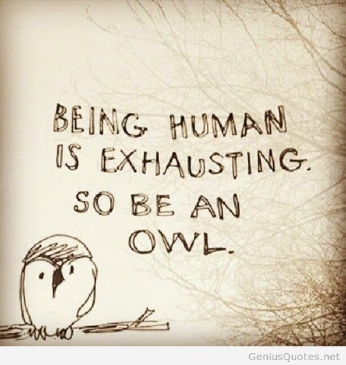 Being Human Funny Picture Quote Humanity Quotes Owl Quotes Self Acceptance Quotes