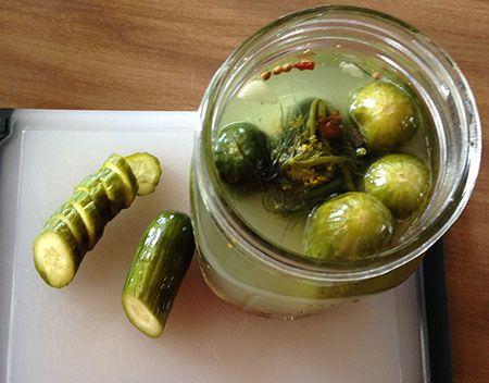 EasyPeasy Dill Pickles Recipe Half sour pickles
