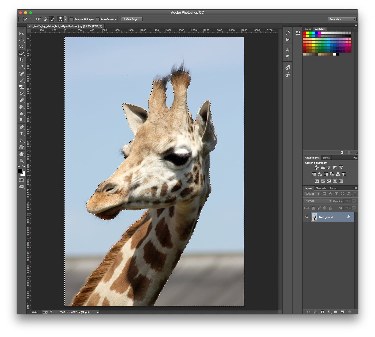 We show you how to remove a background from an image in photoshop we show you how to remove a background from an image in photoshop in our step baditri Images