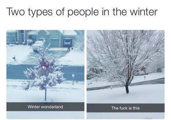 Funny Meme Types : 2 types of winter people #funny #people #snow #winter funny