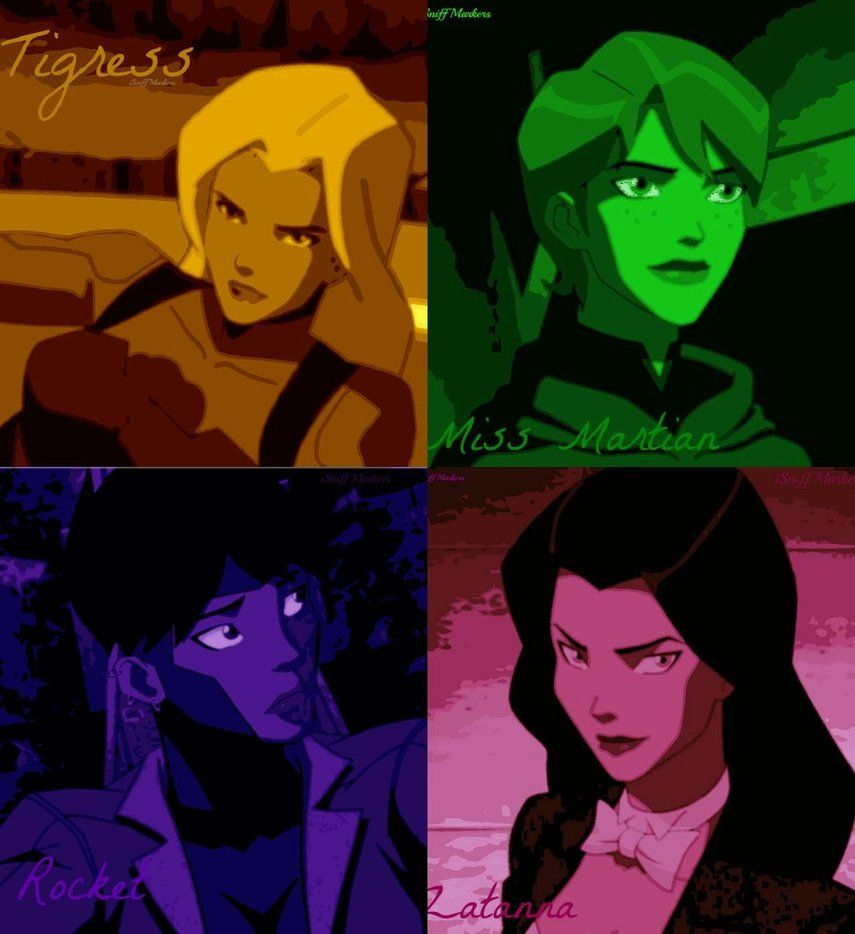 Young Justice Girls Artemis Tigress Miss Martian Rocket Zatanna Young Justice Young Justice Robin Justice