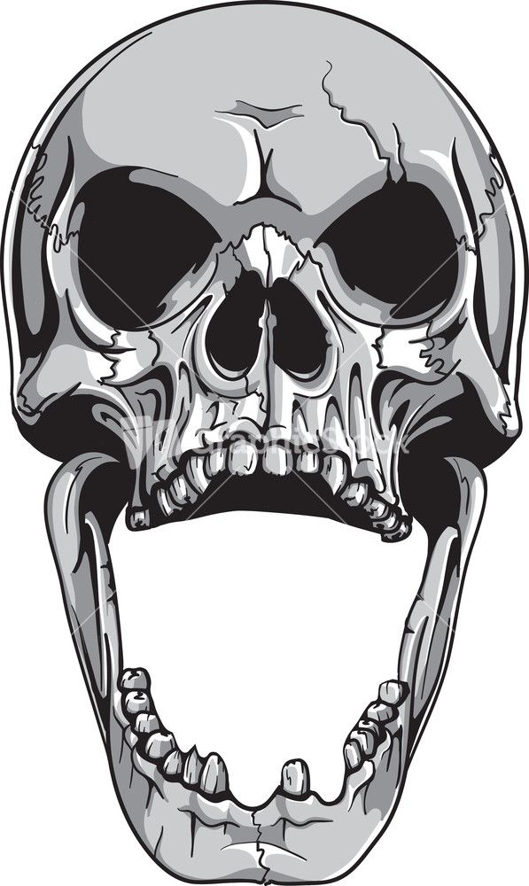 Skull Vector Element My Idjuo M Jpg 597 1 000 Pixels Skulls Drawing Skull Art Skull Tattoo Design