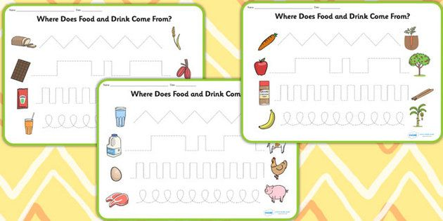 Where Does Food and Water Come From Pencil Control Worksheets ...