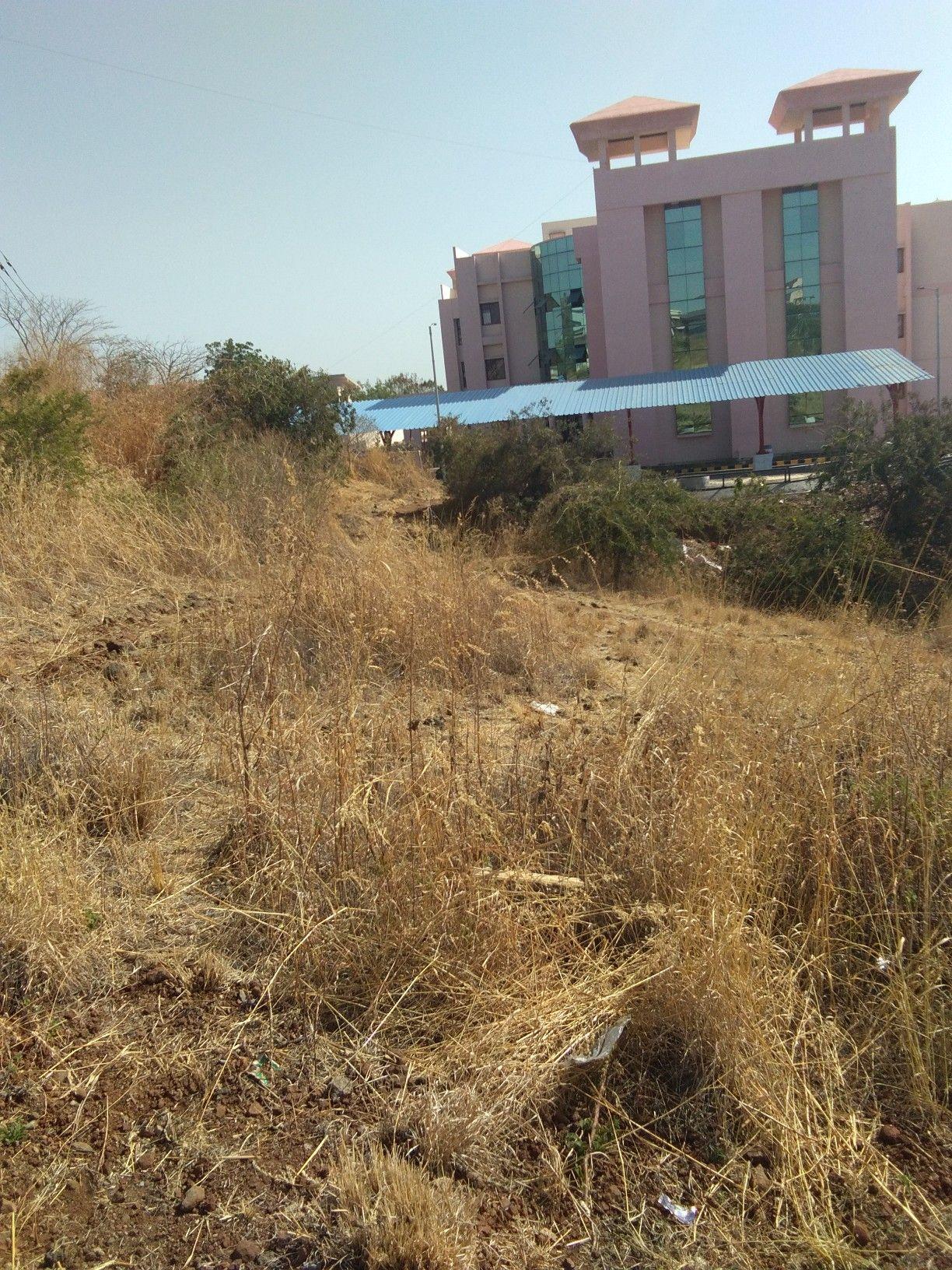 Gandhi Hills