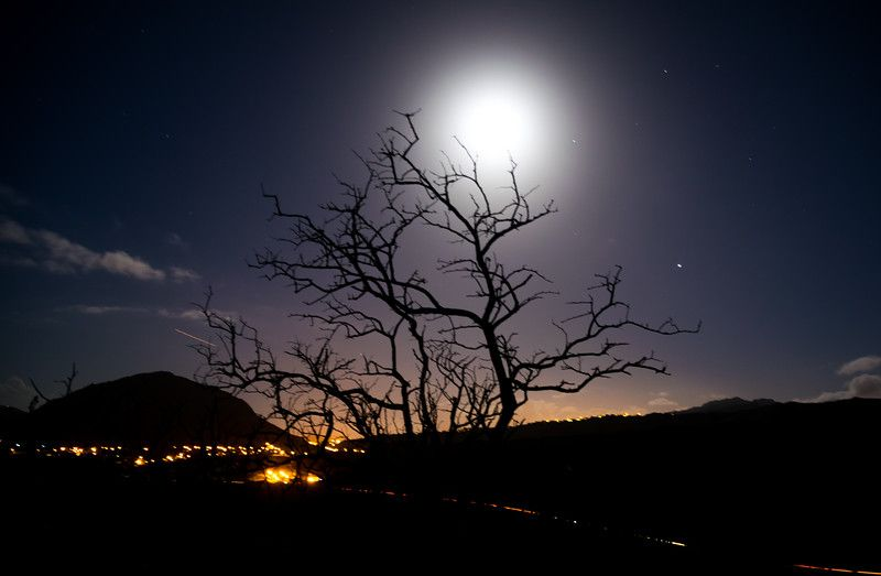 Oahu - Wandering Goat Photography
