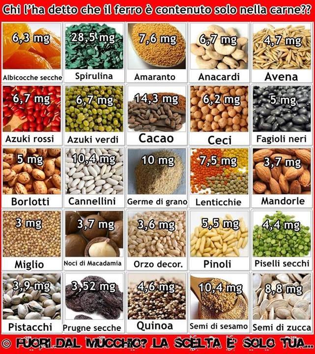 Alimenti vegetali ricchi di ferro