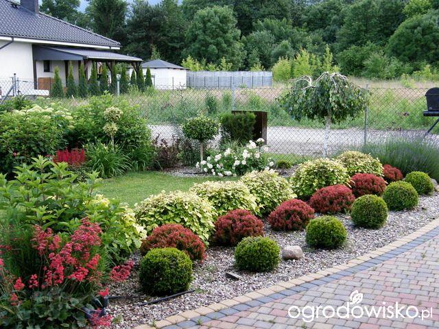 Ogrodowe Przygody Grasses Landscaping Low Water Landscaping Front Yard Landscaping