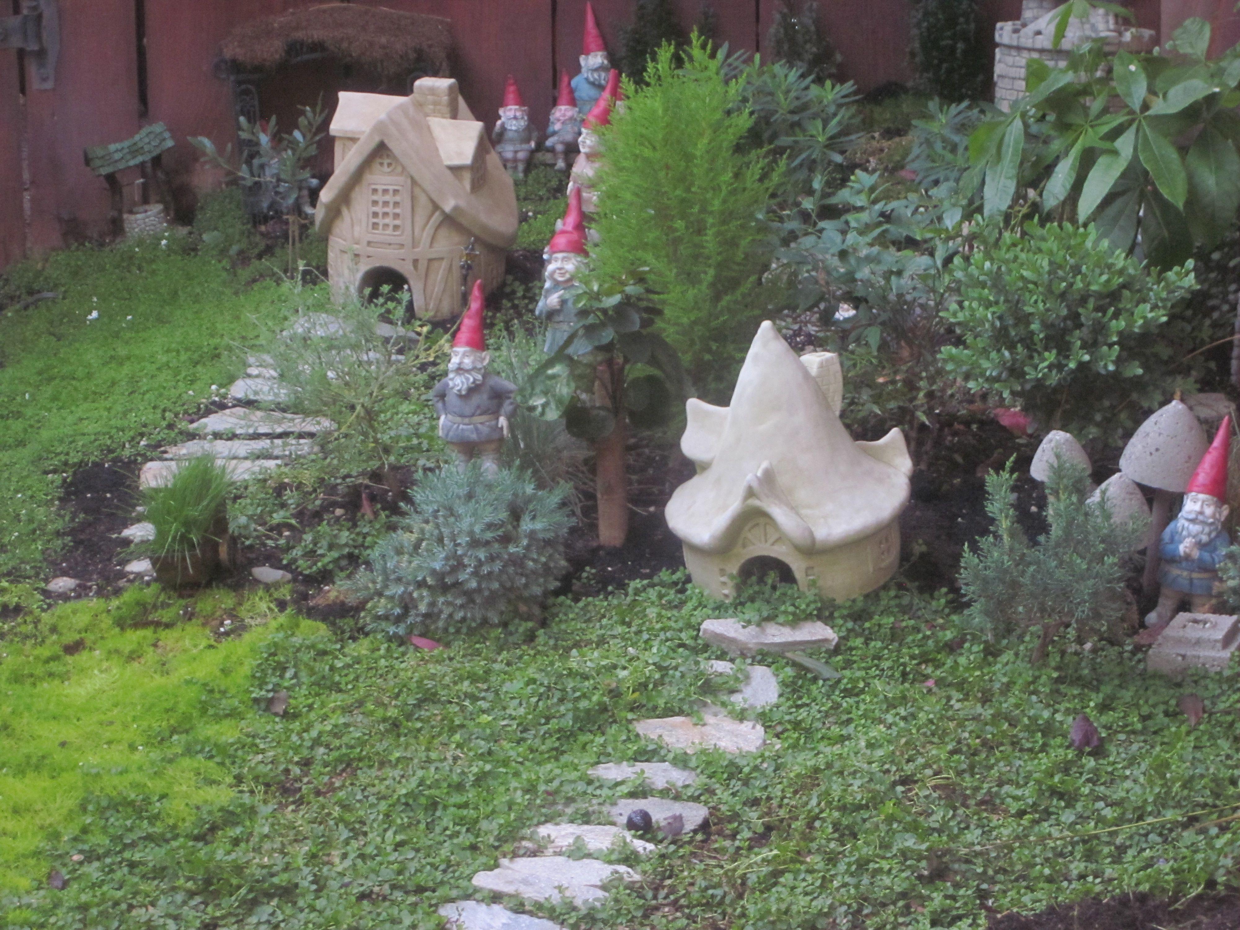 Gnome Garden