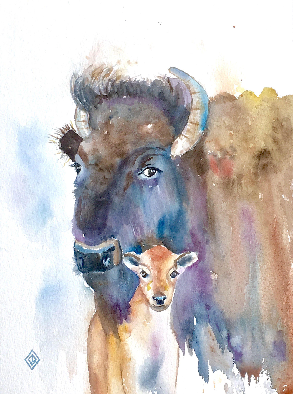 Original Bison Mama And Baby Original Watercolor Painting
