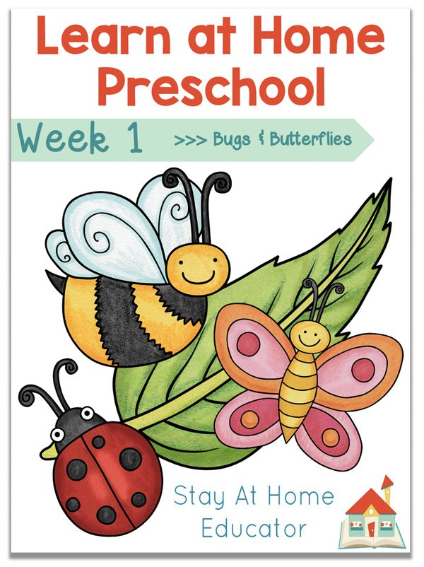 Photo of Free Homeschool Preschool Lesson Plans – Stay At Home Educator