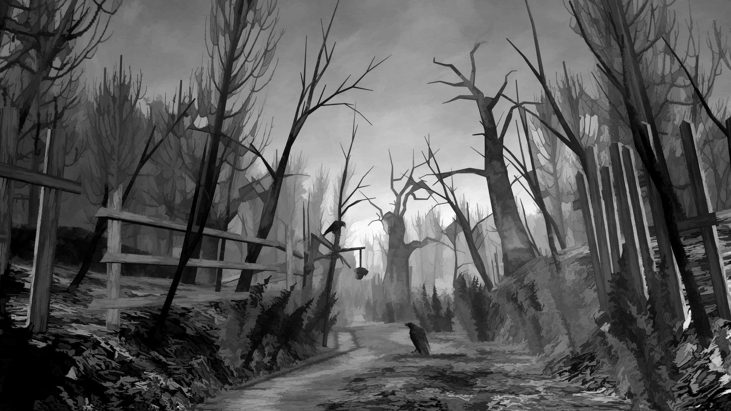 Eerie Dark Forest
