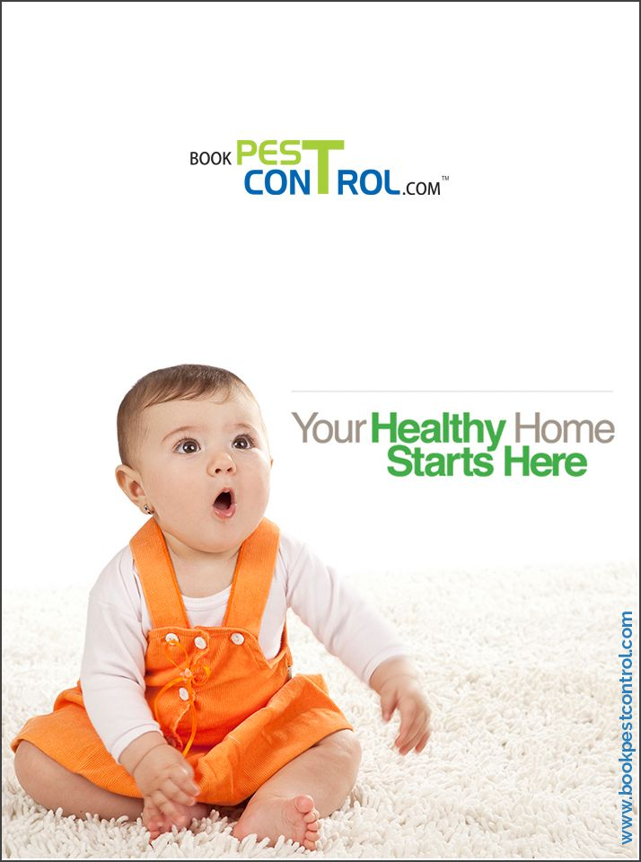 your healthy home starts here. http://bookpestcontrol.com/