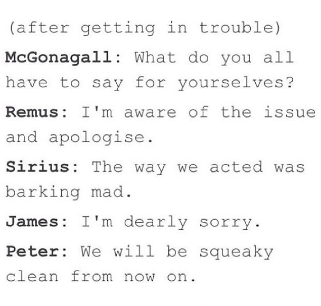 The Marauders Get It He S Aware Of The Issues Barking Mad Deerly Sorry Squeaky Cle Harry Potter Universal Harry Potter Headcannons Harry Potter Marauders