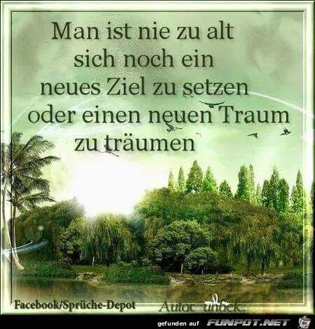 Pin Von Andreas Auf Sprüche Zitate Liebe Pinterest Quotes