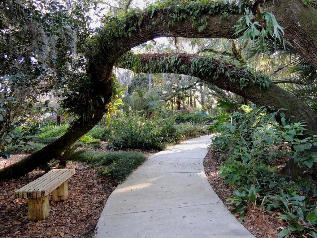 eureka springs park tampa 6800 woodstork dr tampa fl 33637