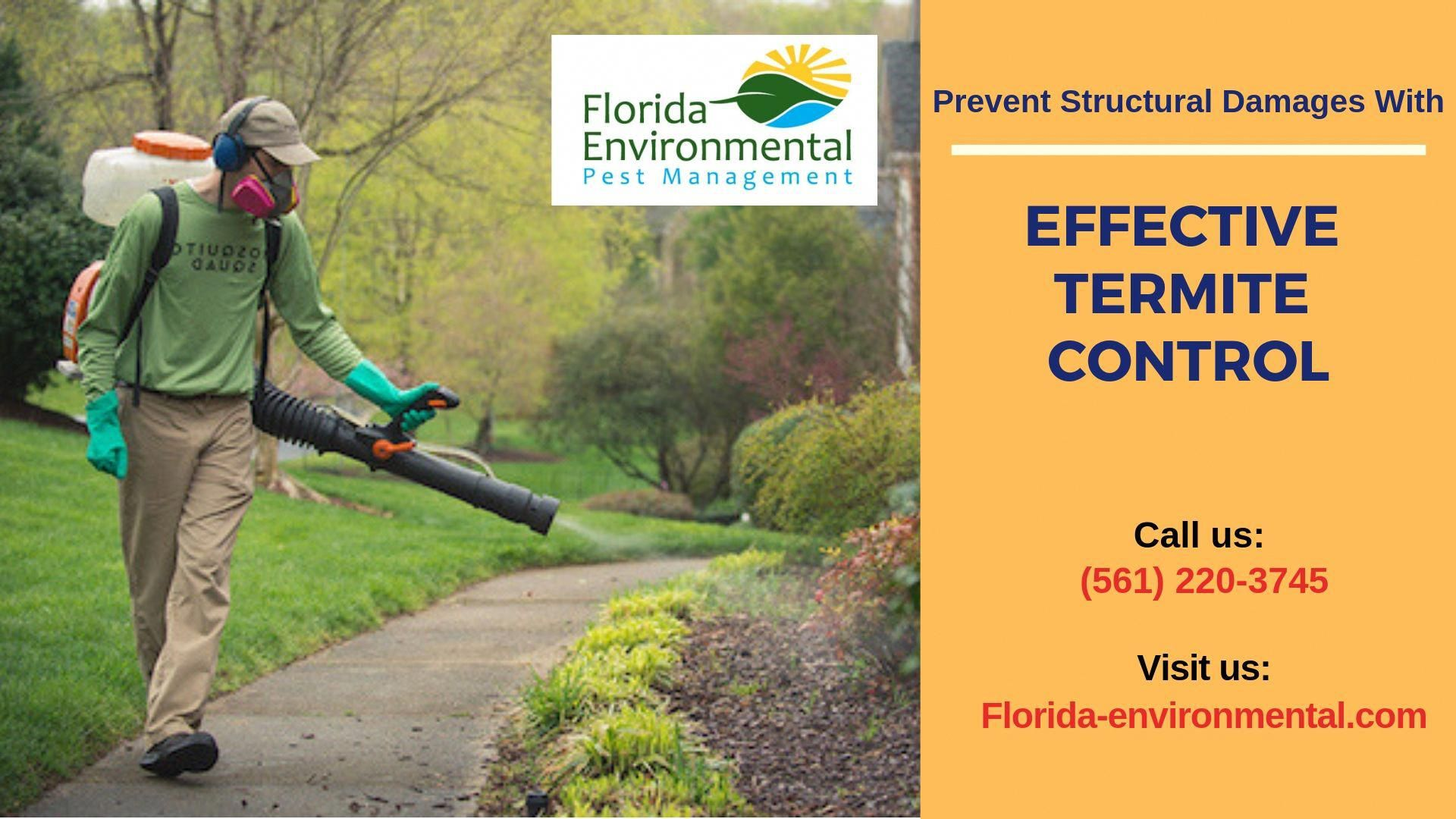 Keep Your Home Termites Free Our Florida Environmental Pest Management Provides Dry Wood Termite Cont Termite Control Termite Treatment Termite Treatment Cost