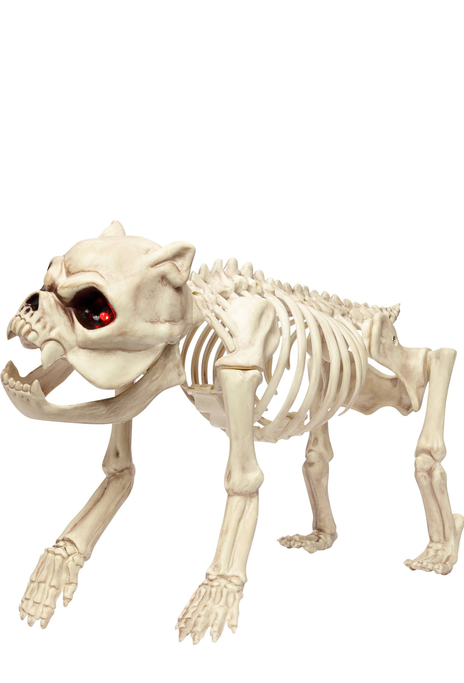 the perfect addition to your haunted home the small skeleton dog stands 112 inches tall scary halloween propshalloween decorationshalloween