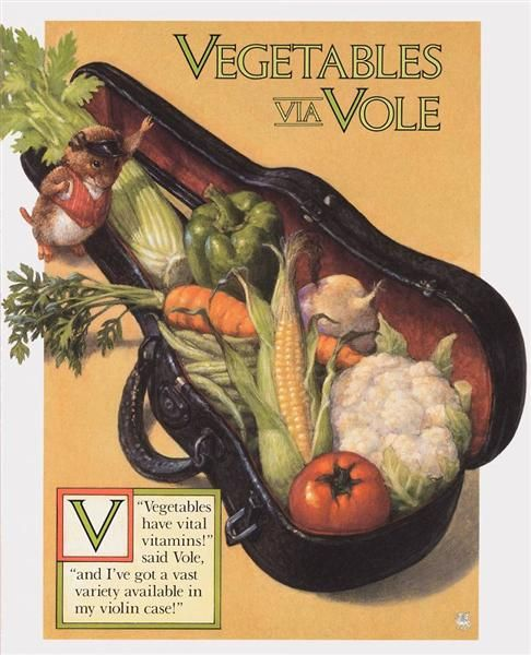 Vegetables have vital vitamins said Vole and I have a vast variety available in my violin case!  SCOTT GUSTAFSON - V