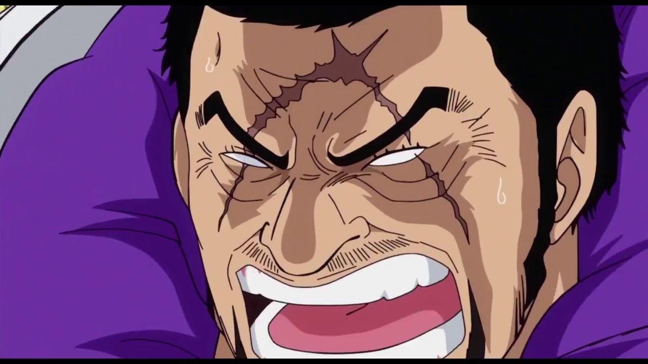 Luffy vs. Admiral Fujitora | One Piece | 743 | 1080p | One piece episodes, Anime, One piece anime