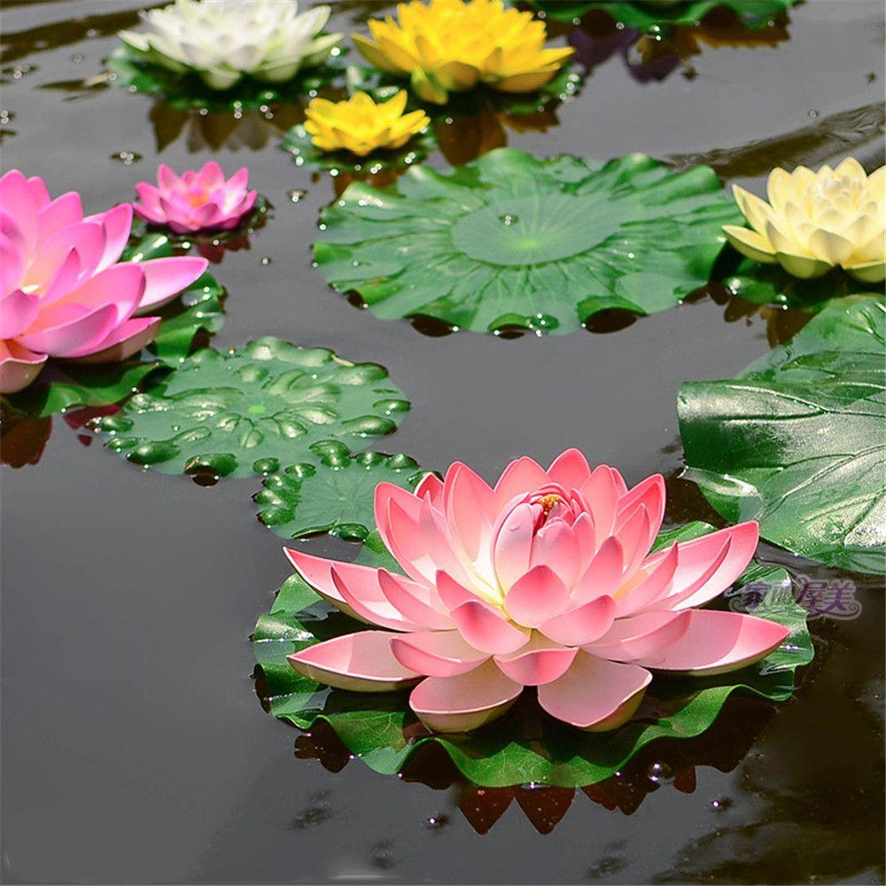 Buy Lotus Flower Gallery Flower Wallpaper Hd