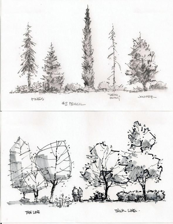 Essential techniques for sketching the energy of places for Landscape and garden design sketchbooks