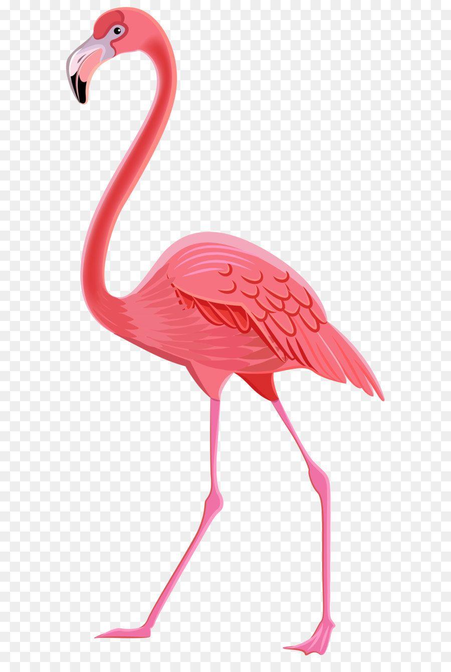 Flamingos Bird Clip Art Flamingo Png Transparent Clip Art Image Unlimited Download Kisspng Com Flamingo Art How To Draw Flamingo Flamingo