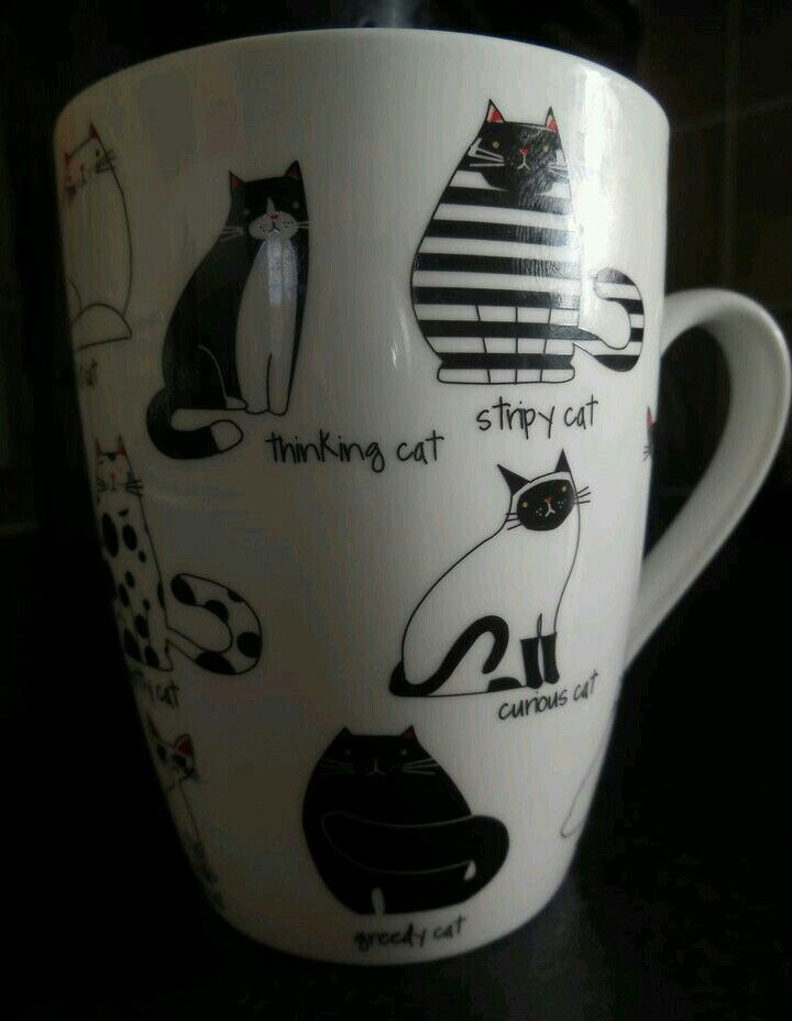 Taza - Jarro - Mug   Gatos