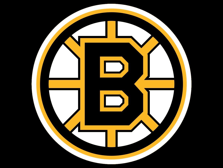 I Have A New Appreciation For Hockey Boston Bruins Logo