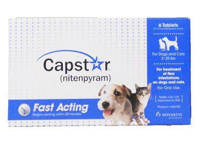 Capstar Supplies Fast Aid Of Flea Symptoms Flea Control For Dogs Cat Fleas Frontline Plus For Cats