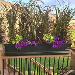Black railing privacy planter with tall rubrum plants for Privacy planters for decks