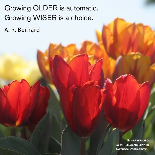 As we grow older and wiser   Lessons learned in life